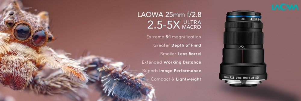 LAOWA-25MM-MACRO-SAMPLE-PHOTO